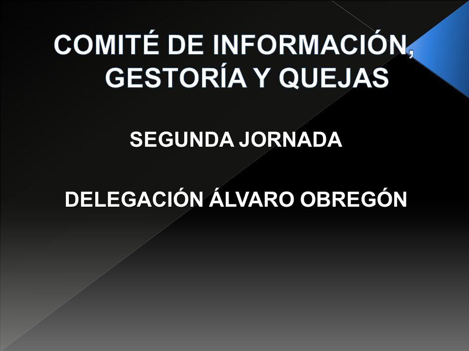 SEGUNDA JORNADA DELEGACIÓN ÁLVARO OBREGÓN