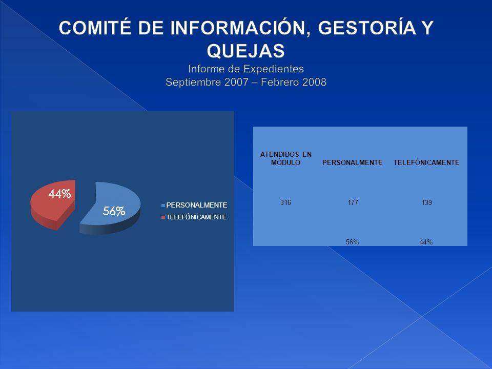 ATENDIDOS EN MÓDULOPERSONALMENTETELEFÓNICAMENTE 316177139 56%44%