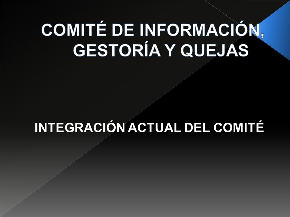 INTEGRACIÓN ACTUAL DEL COMITÉ
