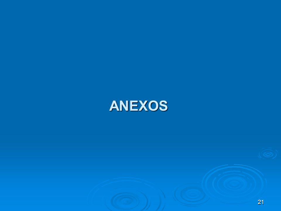 21 ANEXOS