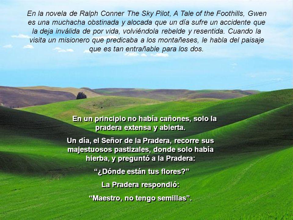 En la novela de Ralph Conner The Sky Pilot, A Tale of the Foothills, Gwen es una muchacha obstinada y alocada que un día sufre un accidente que la deja inválida de por vida, volviéndola rebelde y resentida.
