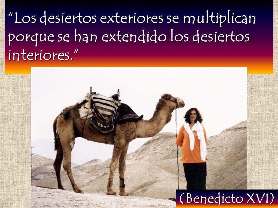 Los desiertos exteriores se multiplican porque se han extendido los desiertos interiores. (Benedicto XVI)