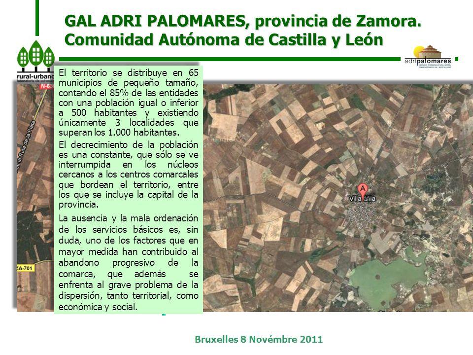Bruxelles 8 Novémbre 2011 GAL ADRI PALOMARES, provincia de Zamora.