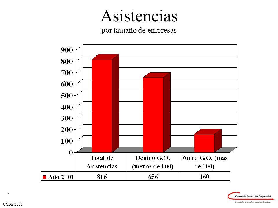 ©CDE-2002 Asistencias por tamaño de empresas.
