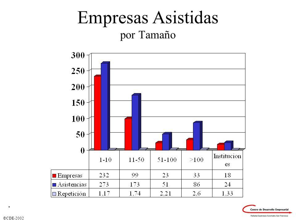 ©CDE-2002 Empresas Asistidas por Tamaño.