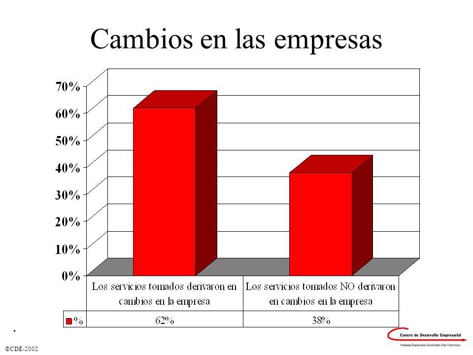 ©CDE-2002 Cambios en las empresas.