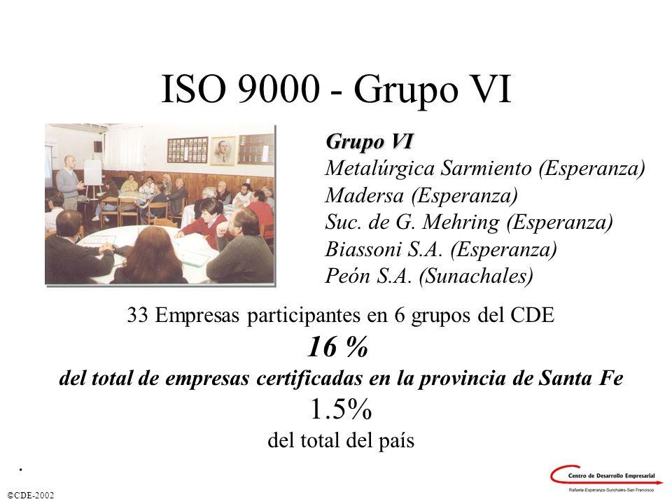 ©CDE-2002 ISO 9000 - Grupo VI Grupo VI Metalúrgica Sarmiento (Esperanza) Madersa (Esperanza) Suc. de G. Mehring (Esperanza) Biassoni S.A. (Esperanza)