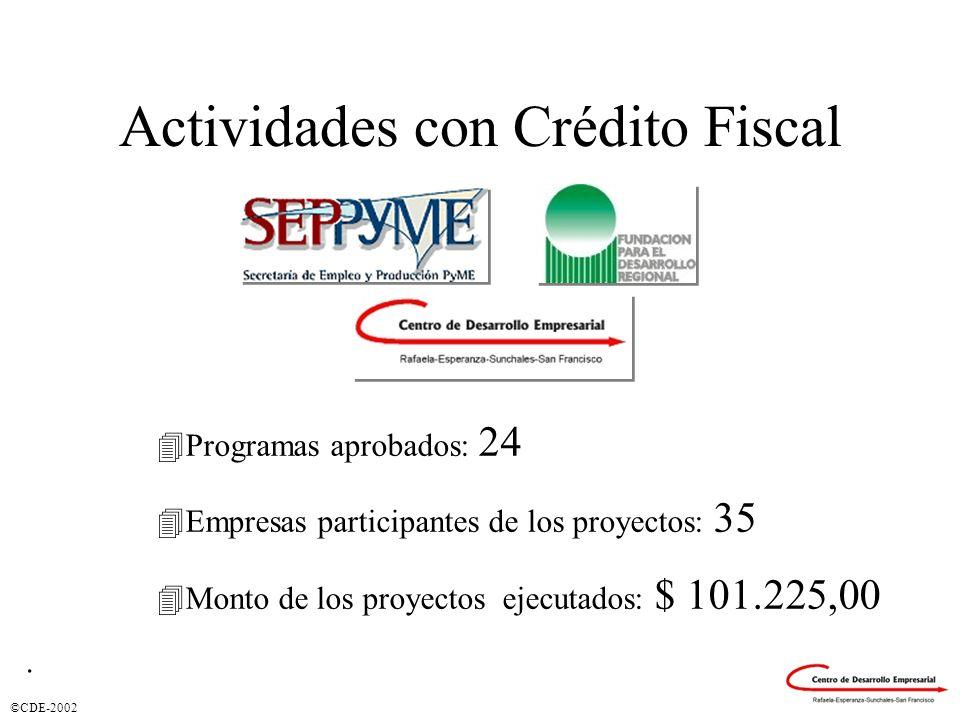 ©CDE-2002 Actividades con Crédito Fiscal 4Programas aprobados: 24 4Empresas participantes de los proyectos: 35 4Monto de los proyectos ejecutados: $ 1