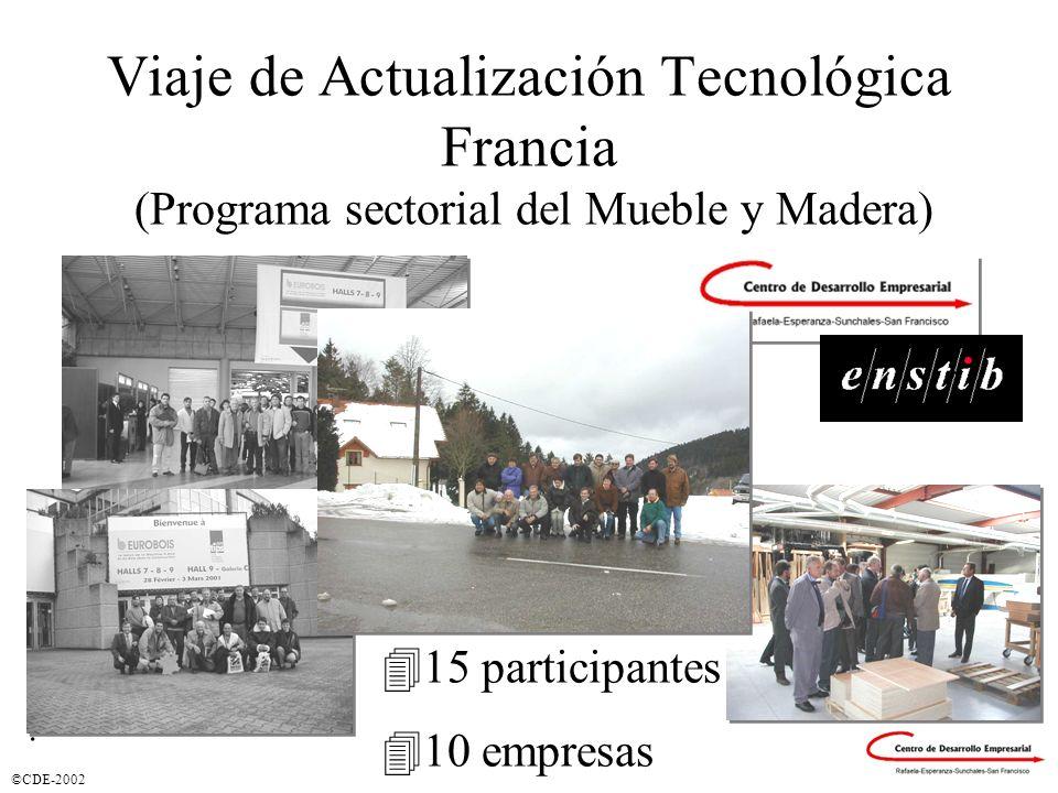 ©CDE-2002 Viaje de Actualización Tecnológica Francia (Programa sectorial del Mueble y Madera). 415 participantes 410 empresas