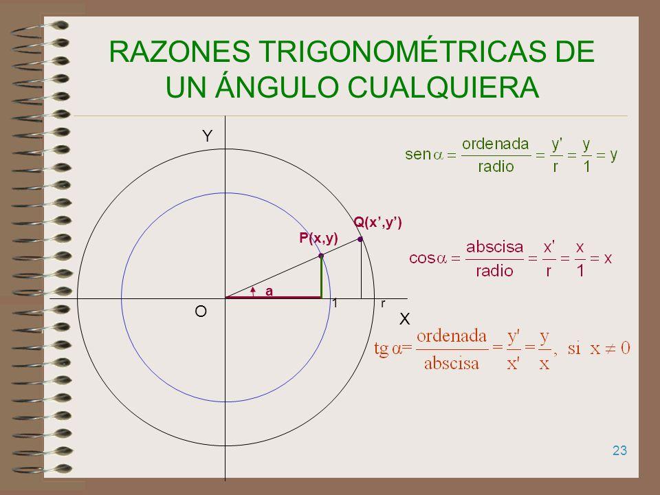 22 CIRCUNFERENCIA GONIOMÉTRICA Trazamos una circunferencia de radio 1 y centro en el origen de un sistema de coordenadas X Y O a Uno de los lados del
