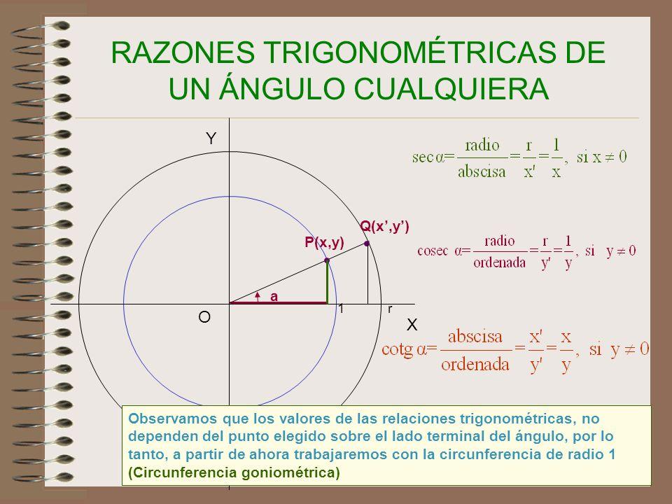 23 RAZONES TRIGONOMÉTRICAS DE UN ÁNGULO CUALQUIERA X Y O a 1 P(x,y) Q(x,y) r