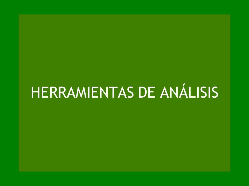 HERRAMIENTAS DE ANÁLISIS
