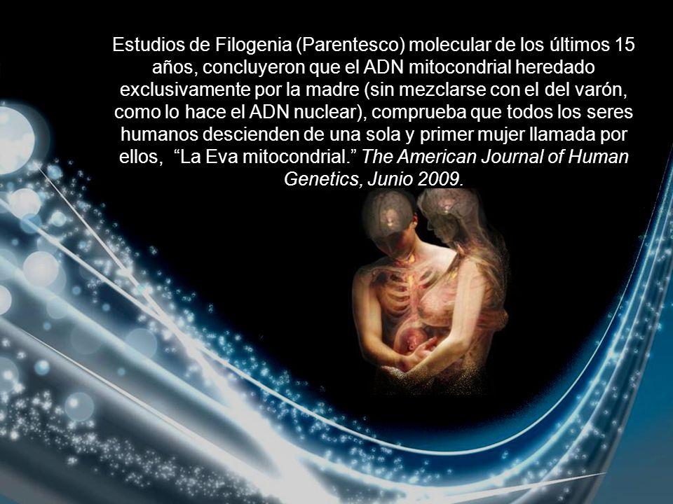 Estudios de Filogenia (Parentesco) molecular de los últimos 15 años, concluyeron que el ADN mitocondrial heredado exclusivamente por la madre (sin mezclarse con el del varón, como lo hace el ADN nuclear), comprueba que todos los seres humanos descienden de una sola y primer mujer llamada por ellos, La Eva mitocondrial.