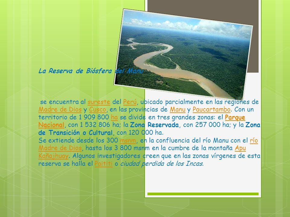 La Reserva de Biósfera del Manu se encuentra al sureste del Perú, ubicado parcialmente en las regiones de Madre de Dios y Cusco, en las provincias de