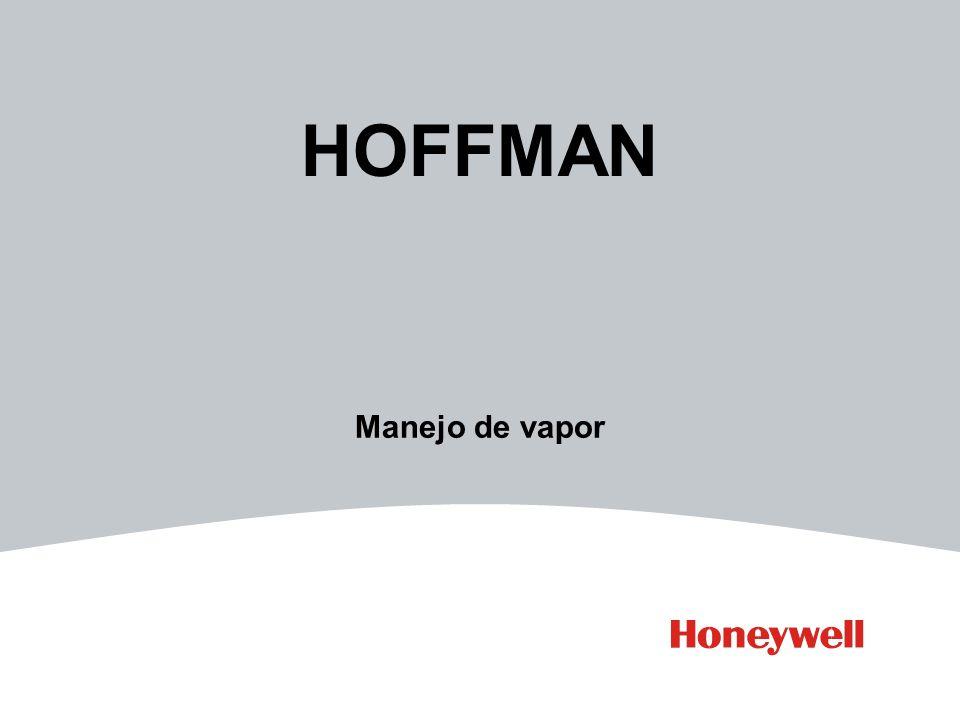 HOFFMAN Manejo de vapor