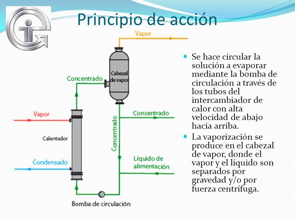 Principio de acción Se hace circular la solución a evaporar mediante la bomba de circulación a través de los tubos del intercambiador de calor con alt