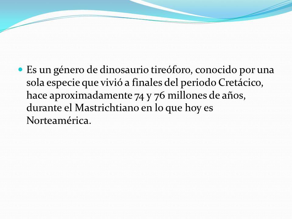 Es un género de dinosaurio tireóforo, conocido por una sola especie que vivió a finales del periodo Cretácico, hace aproximadamente 74 y 76 millones d
