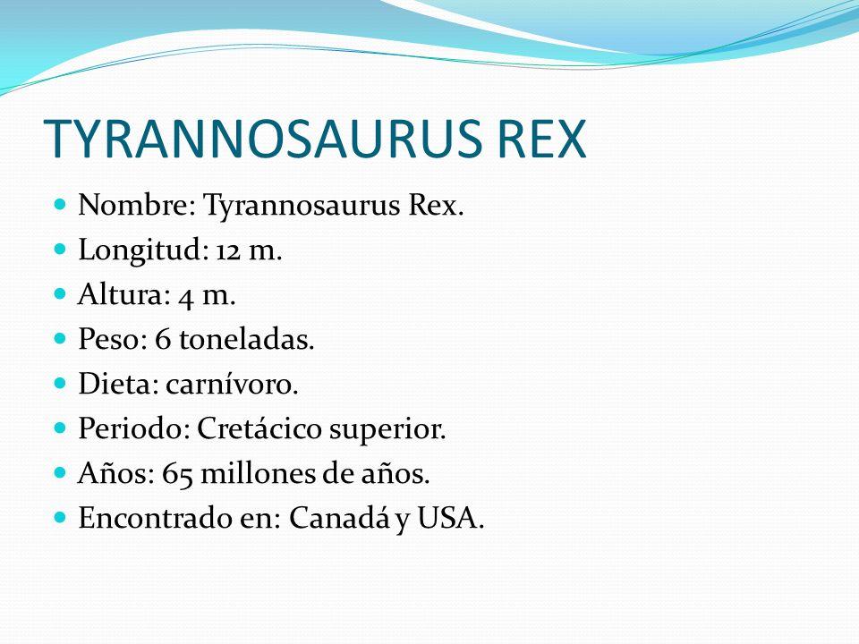 TYRANNOSAURUS REX Nombre: Tyrannosaurus Rex. Longitud: 12 m. Altura: 4 m. Peso: 6 toneladas. Dieta: carnívoro. Periodo: Cretácico superior. Años: 65 m