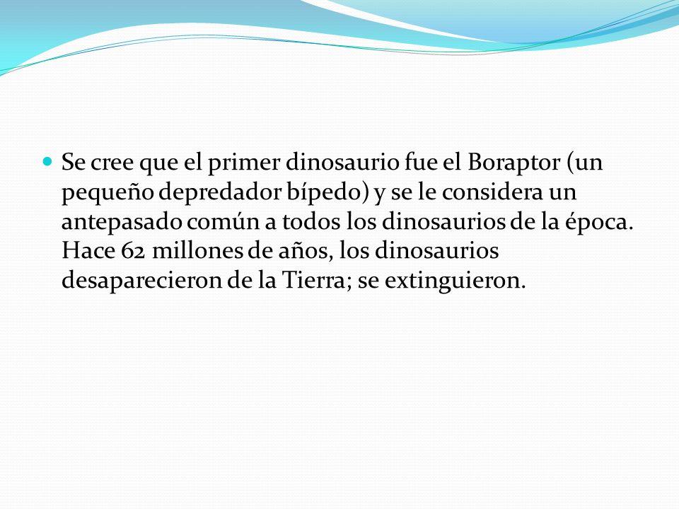 Se cree que el primer dinosaurio fue el Boraptor (un pequeño depredador bípedo) y se le considera un antepasado común a todos los dinosaurios de la ép
