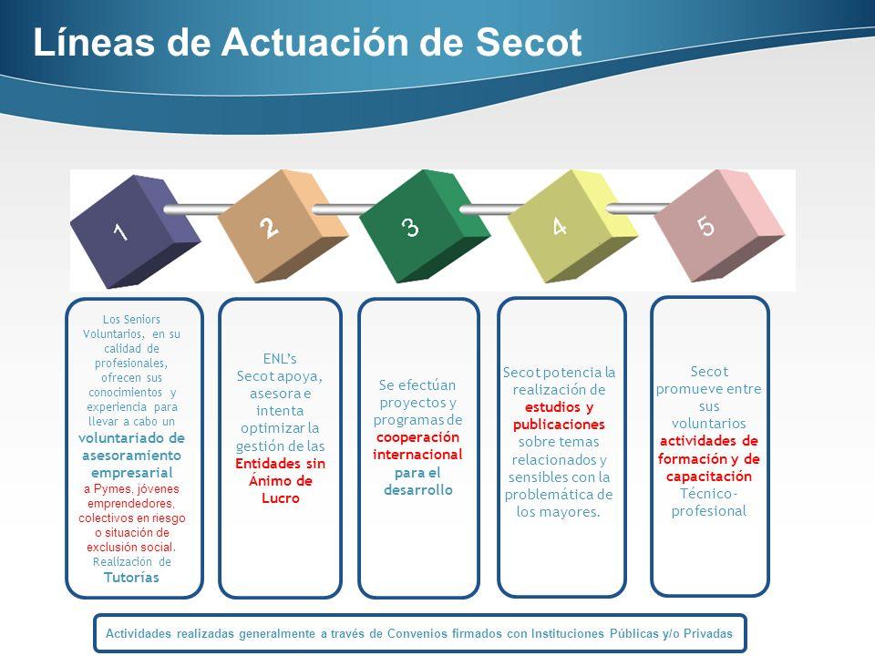 Análisis de situación de Pequeña y Mediana Empresa sin acceso a servicios externos profesionalizados.