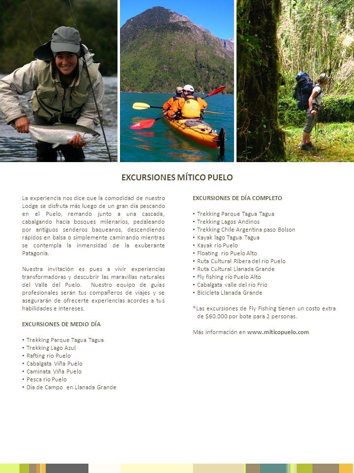EXCURSIONES MÍTICO PUELO EXCURSIONES DE DÍA COMPLETO Trekking Parque Tagua Tagua Trekking Lagos Andinos Trekking Chile Argentina paso Bolson Kayak lag