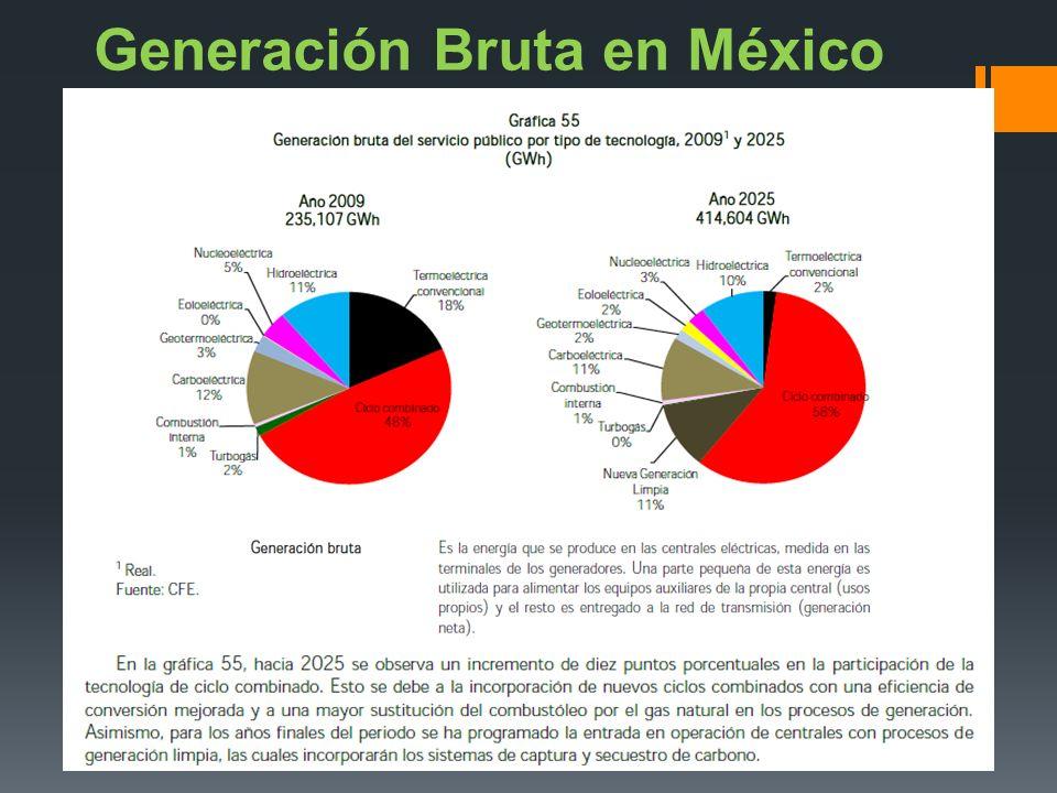 Generación Bruta en México