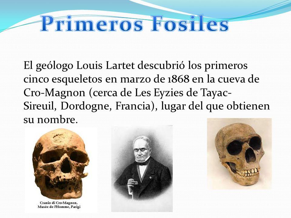 El geólogo Louis Lartet descubrió los primeros cinco esqueletos en marzo de 1868 en la cueva de Cro-Magnon (cerca de Les Eyzies de Tayac- Sireuil, Dor