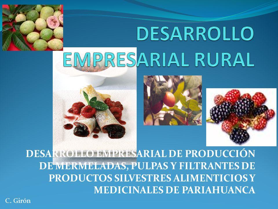 DESARROLLO EMPRESARIAL DE PRODUCCIÓN DE MERMELADAS, PULPAS Y FILTRANTES DE PRODUCTOS SILVESTRES ALIMENTICIOS Y MEDICINALES DE PARIAHUANCA C. Girón
