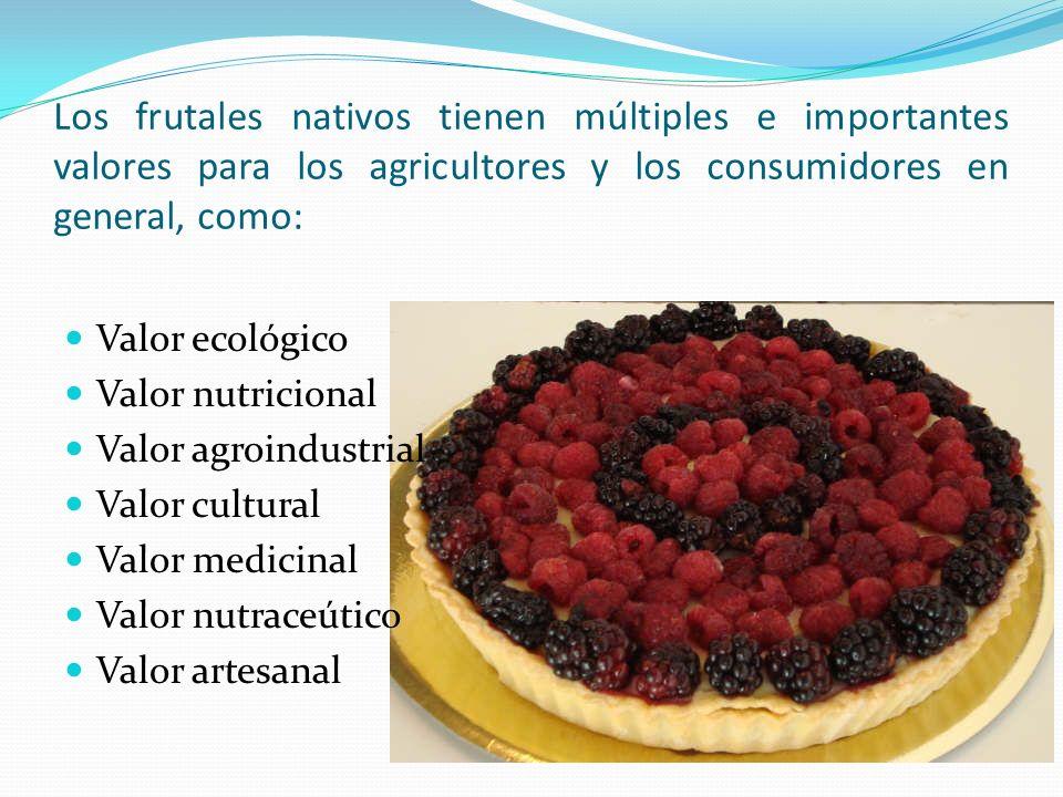 Los frutales nativos tienen múltiples e importantes valores para los agricultores y los consumidores en general, como: Valor ecológico Valor nutricion