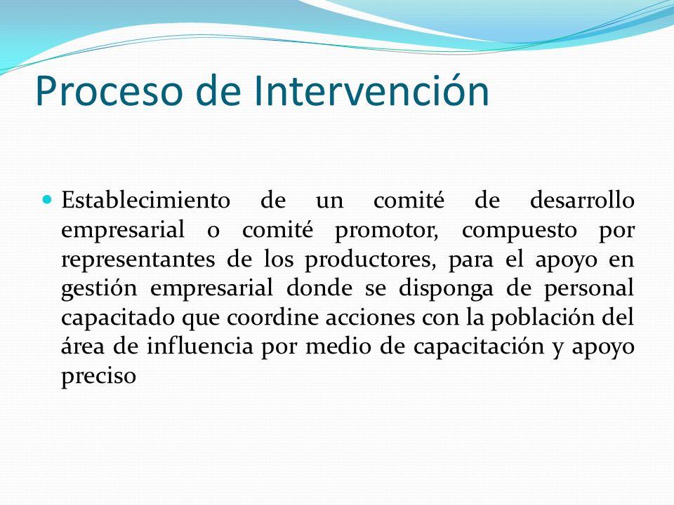 Proceso de Intervención Establecimiento de un comité de desarrollo empresarial o comité promotor, compuesto por representantes de los productores, par
