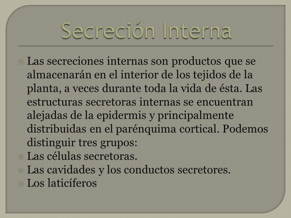 Las secreciones internas son productos que se almacenarán en el interior de los tejidos de la planta, a veces durante toda la vida de ésta. Las estruc