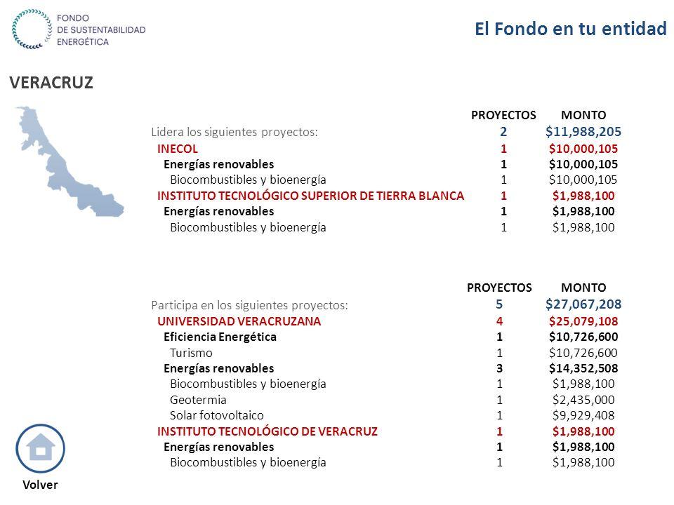 VERACRUZ PROYECTOSMONTO Lidera los siguientes proyectos: 2$11,988,205 INECOL1$10,000,105 Energías renovables1$10,000,105 Biocombustibles y bioenergía1