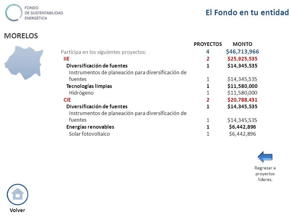 MORELOS PROYECTOSMONTO Participa en los siguientes proyectos: 4$46,713,966 IIE2$25,925,535 Diversificación de fuentes1$14,345,535 Instrumentos de plan