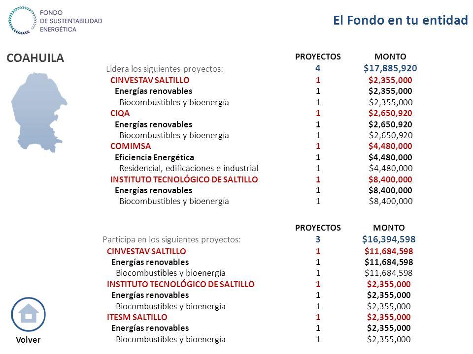 COAHUILA PROYECTOSMONTO Lidera los siguientes proyectos: 4$17,885,920 CINVESTAV SALTILLO1$2,355,000 Energías renovables1$2,355,000 Biocombustibles y b