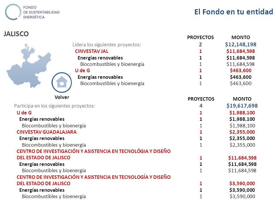 JALISCO PROYECTOSMONTO Lidera los siguientes proyectos: 2$12,148,198 CINVESTAV JAL1$11,684,598 Energías renovables1$11,684,598 Biocombustibles y bioen
