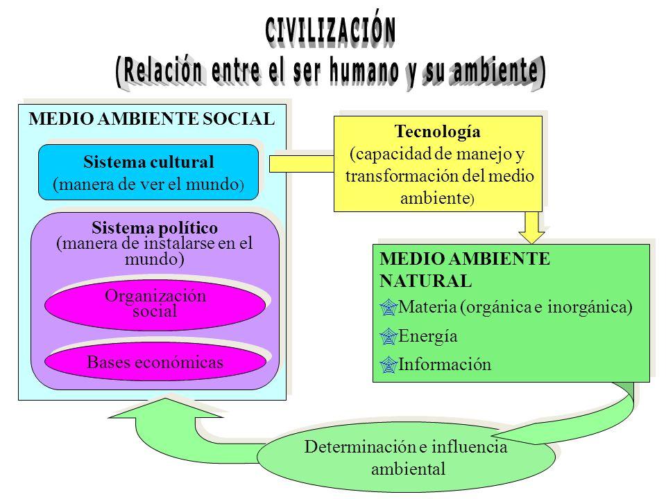 MEDIO AMBIENTE SOCIAL Sistema cultural (manera de ver el mundo ) Sistema cultural (manera de ver el mundo ) Sistema político (manera de instalarse en