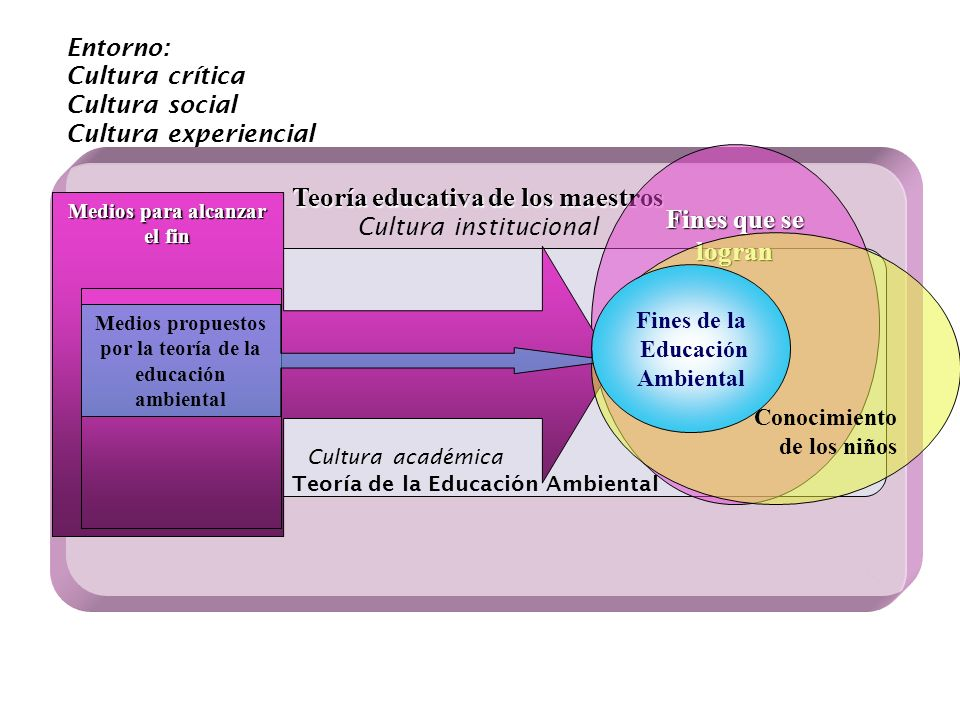 Teoría educativa de los maestros Cultura institucional Cultura académica Teoría de la Educación Ambiental Fines que se logran Medios para alcanzar el