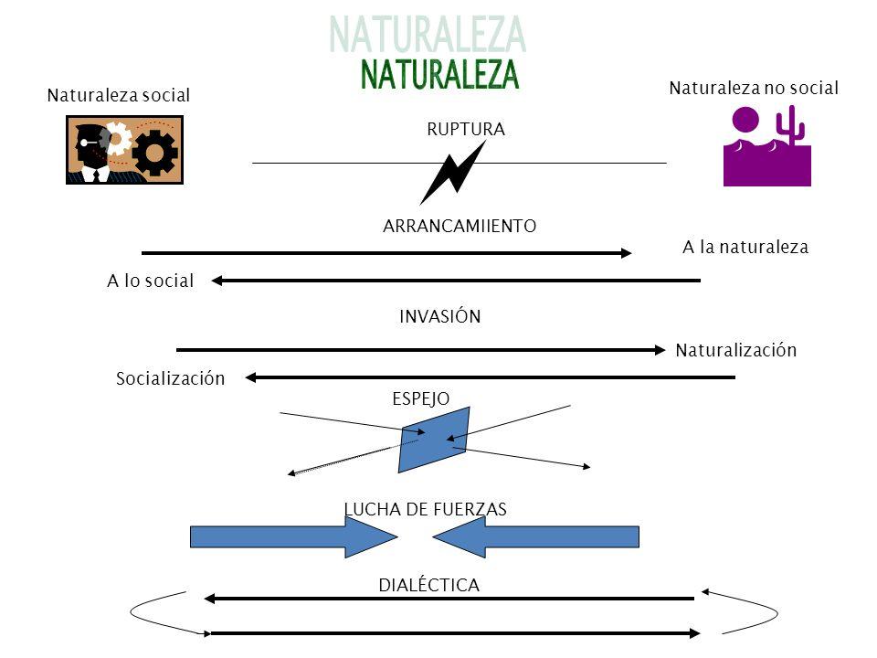 RUPTURA Naturaleza social Naturaleza no social A lo social ARRANCAMIIENTO ESPEJO LUCHA DE FUERZAS DIALÉCTICA Naturalización INVASIÓN Socialización A l