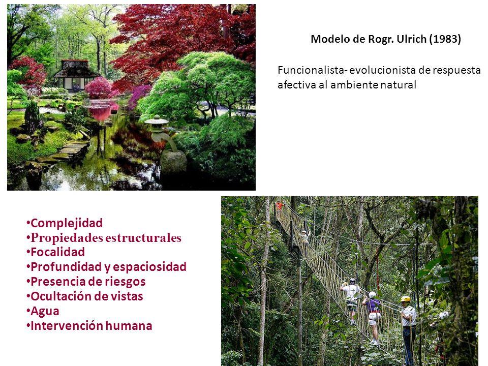 Complejidad Propiedades estructurales Focalidad Profundidad y espaciosidad Presencia de riesgos Ocultación de vistas Agua Intervención humana Modelo d