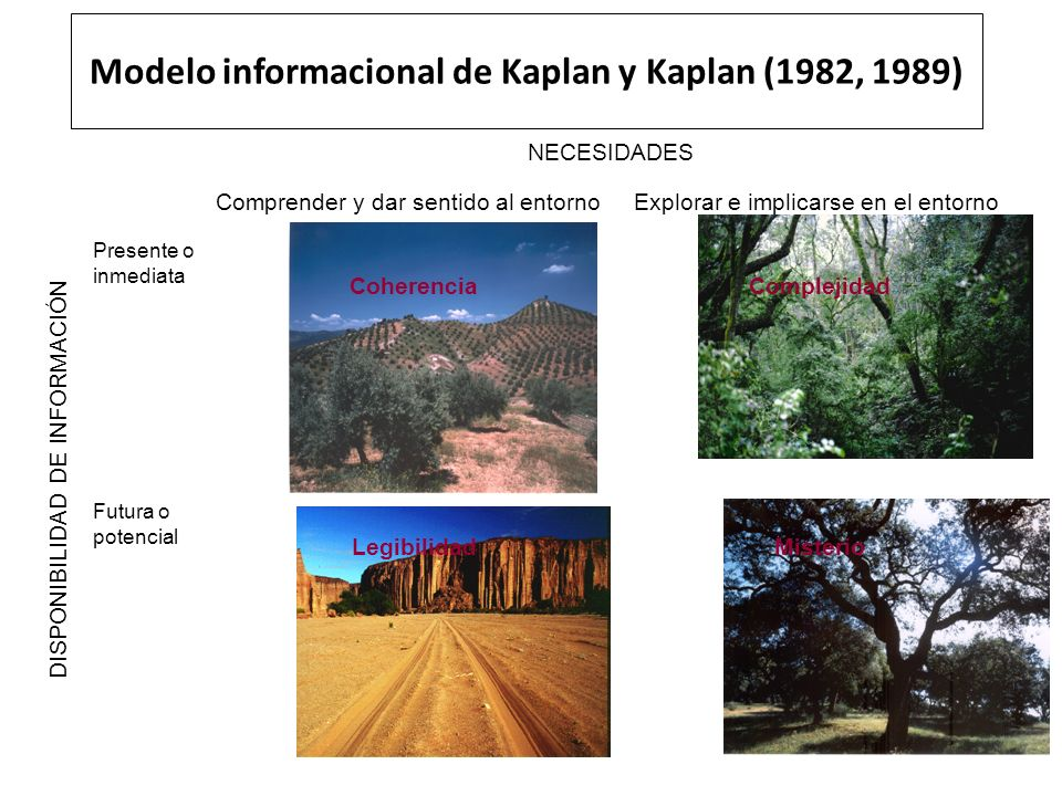 Modelo informacional de Kaplan y Kaplan (1982, 1989) NECESIDADES Comprender y dar sentido al entornoExplorar e implicarse en el entorno DISPONIBILIDAD