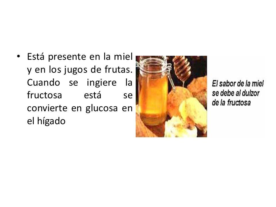 Está presente en la miel y en los jugos de frutas. Cuando se ingiere la fructosa está se convierte en glucosa en el hígado