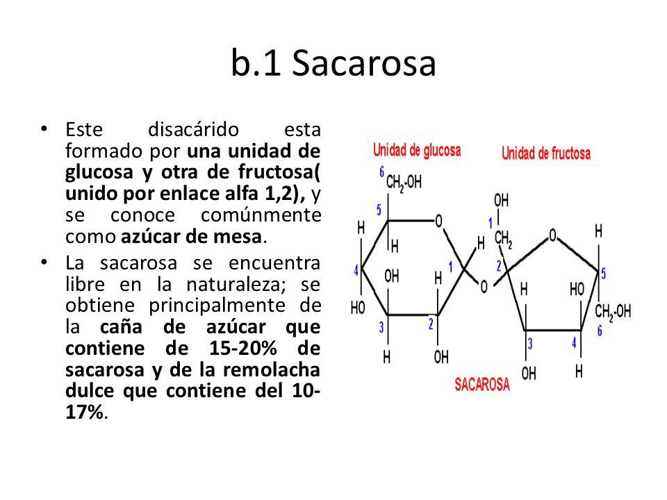 b.1 Sacarosa Este disacárido esta formado por una unidad de glucosa y otra de fructosa( unido por enlace alfa 1,2), y se conoce comúnmente como azúcar