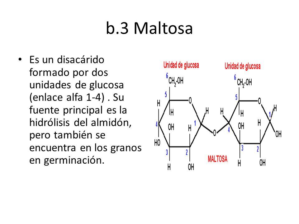 b.3 Maltosa Es un disacárido formado por dos unidades de glucosa (enlace alfa 1-4). Su fuente principal es la hidrólisis del almidón, pero también se