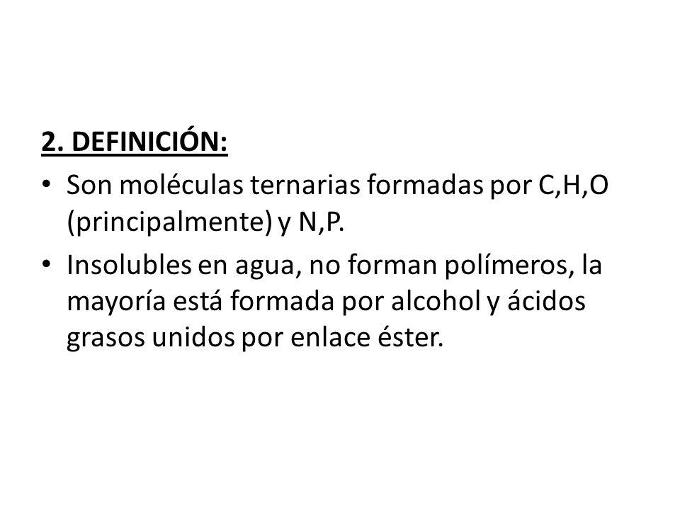 2. DEFINICIÓN: Son moléculas ternarias formadas por C,H,O (principalmente) y N,P. Insolubles en agua, no forman polímeros, la mayoría está formada por