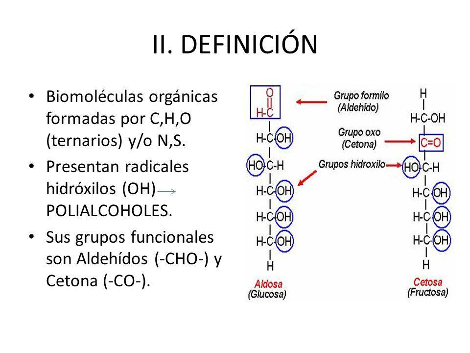 II. DEFINICIÓN Biomoléculas orgánicas formadas por C,H,O (ternarios) y/o N,S. Presentan radicales hidróxilos (OH) POLIALCOHOLES. Sus grupos funcionale