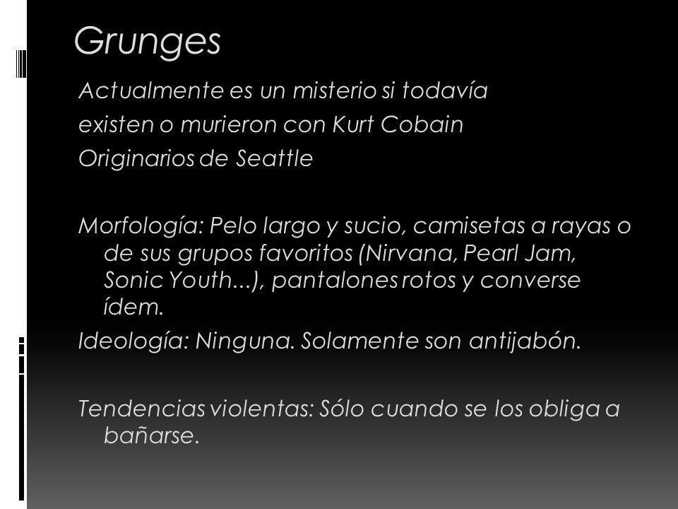 Grunges Actualmente es un misterio si todavía existen o murieron con Kurt Cobain Originarios de Seattle Morfología: Pelo largo y sucio, camisetas a ra
