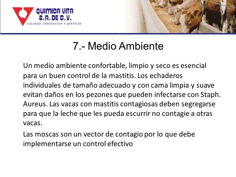 7.- Medio Ambiente Un medio ambiente confortable, limpio y seco es esencial para un buen control de la mastitis. Los echaderos individuales de tamaño