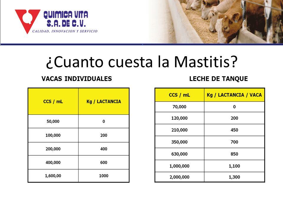 ¿Cuanto cuesta la Mastitis? VACAS INDIVIDUALES LECHE DE TANQUE