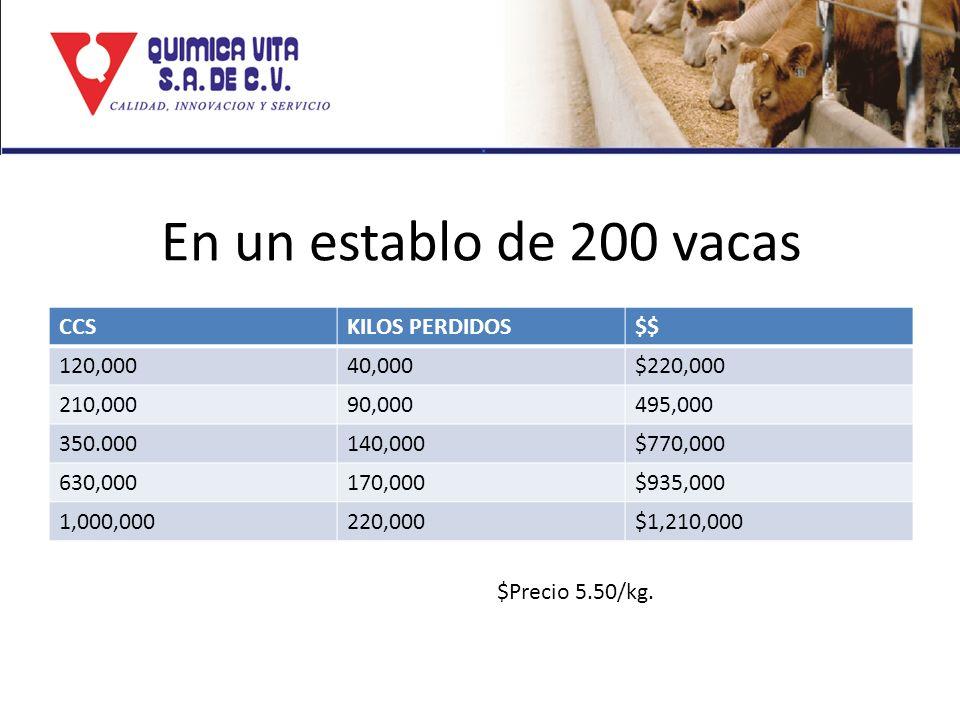 En un establo de 200 vacas CCSKILOS PERDIDOS$$ 120,00040,000$220,000 210,00090,000495,000 350.000140,000$770,000 630,000170,000$935,000 1,000,000220,0
