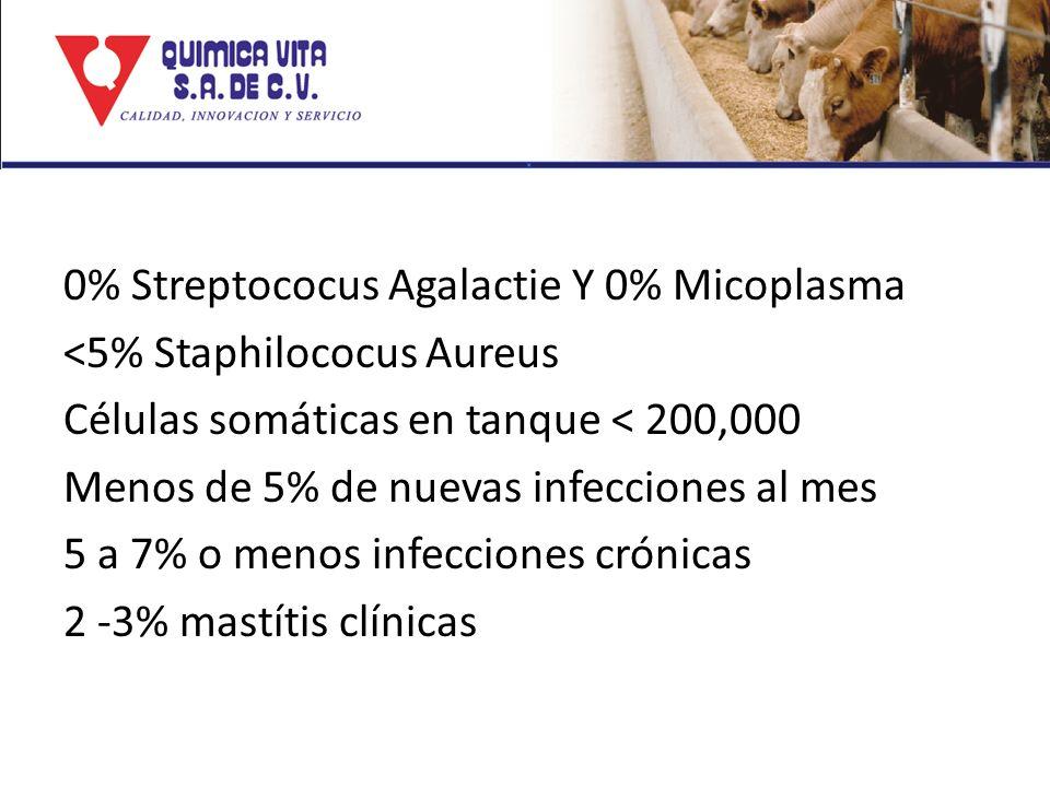 0% Streptococus Agalactie Y 0% Micoplasma <5% Staphilococus Aureus Células somáticas en tanque < 200,000 Menos de 5% de nuevas infecciones al mes 5 a